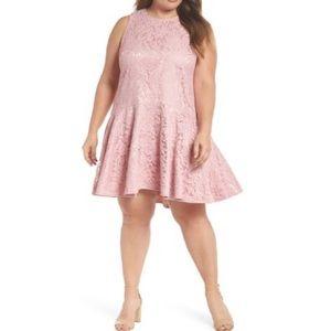NWT Eliza J Lace Sleeveless Drop Waist Dress